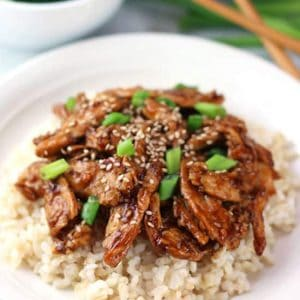 mongolian soy curls atop brown rice on a white plate