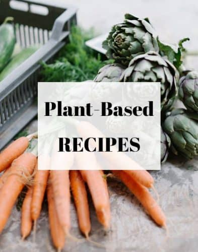 Favorite Recipes for Starting a Plant-Based Diet