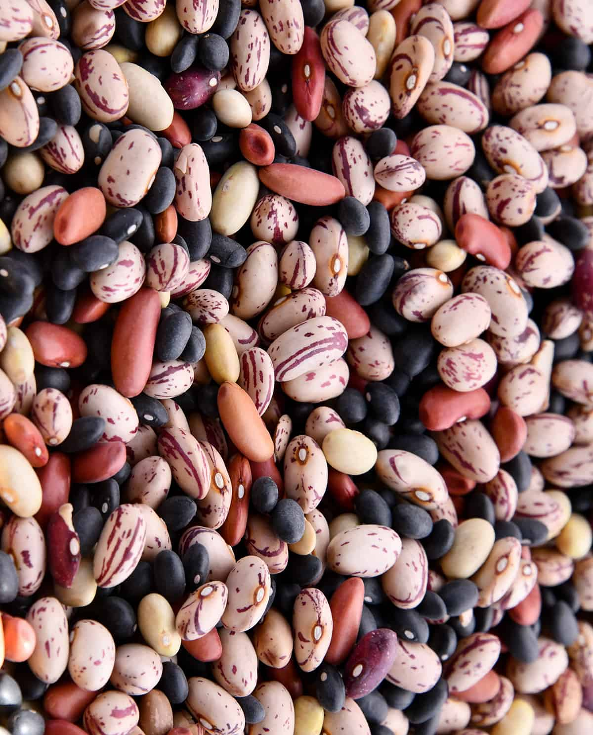 assortment of colored beans